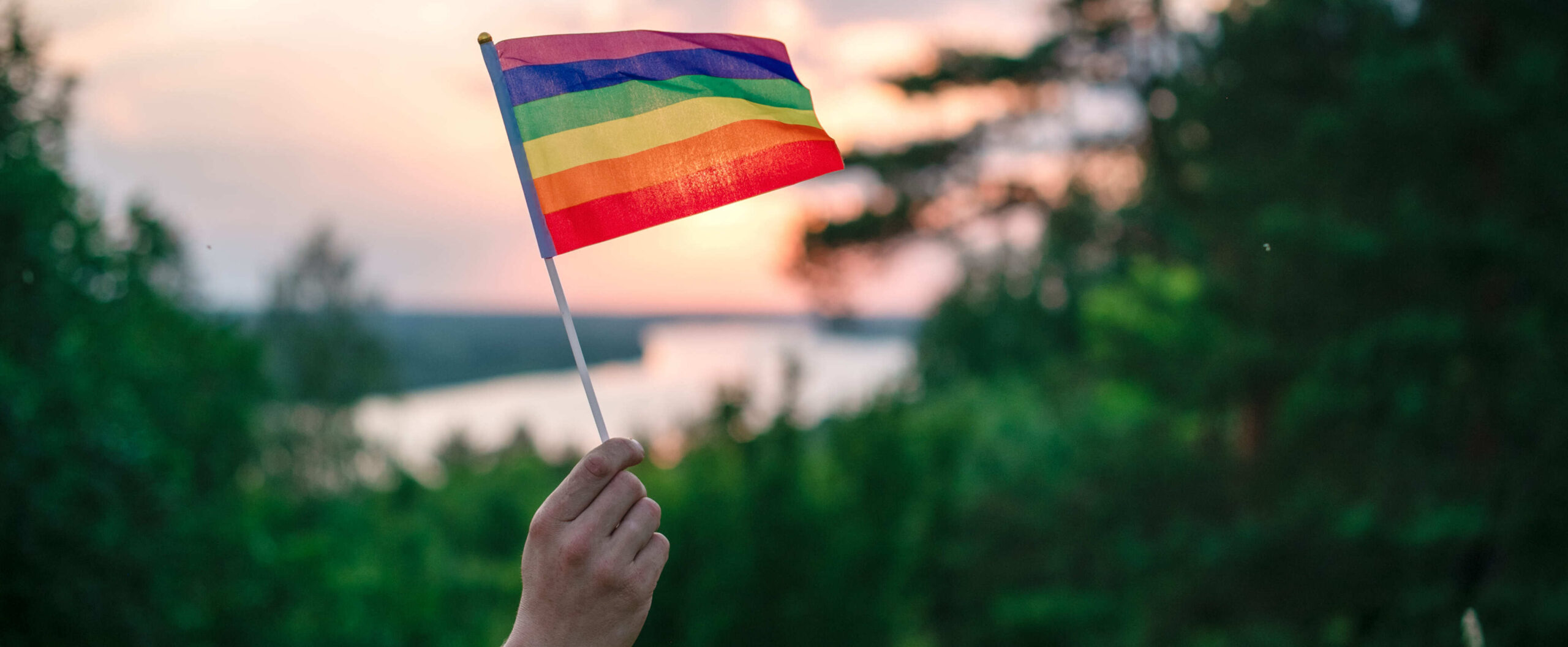 pride flag in hand